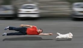 Instrução canina Fotografia de Stock