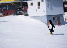 Instrutor do esqui da escola do esqui em um terno de pinguim Estância de esqui nos cumes, Áustria, Zams Fotografia de Stock Royalty Free