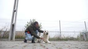 Instrutor profissional novo que recompensa seu cão para escutar seus comandos no movimento lento - vídeos de arquivo