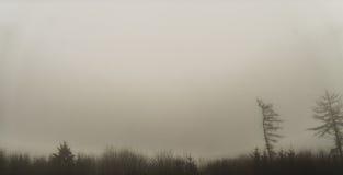 Insuficiente paisagem com névoa Foto de Stock