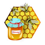 Insulated pot with honey, honeycombs and bees. Vector illustration Stock Image