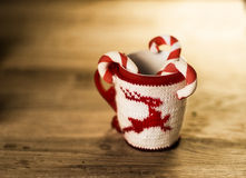 Insulated wool cloth mug with embroidered deer Stock Image