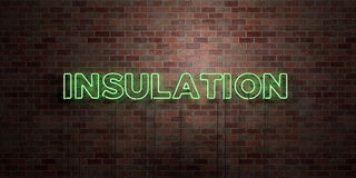 INSULATION - fluorescent Neon tube Sign on brickwork - Front view - 3D rendered royalty free stock picture Royalty Free Stock Photography