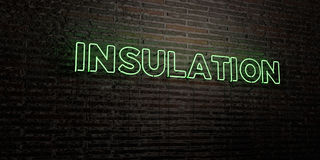 INSULATION -Realistic Neon Sign on Brick Wall background - 3D rendered royalty free stock image Royalty Free Stock Images
