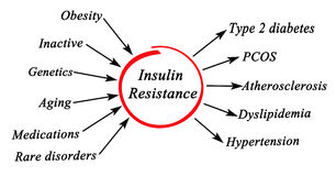 Insulin Resistance. Diagram of causes of Insulin Resistance Royalty Free Stock Photography