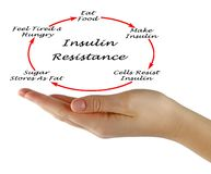 Insulin Resistance. Presenting diagram of Insulin Resistance Royalty Free Stock Photo