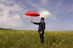 Insurance agent. A insurance agent businessman in the field, the best protection for you Stock Image