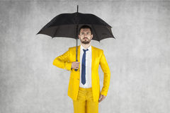 Insurance agent ready for the task Royalty Free Stock Photo