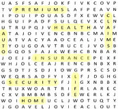 Insurance terms Word Search Royalty Free Stock Photography
