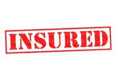 insured иллюстрация вектора