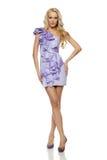 Intégral de la femelle blonde dans la robe lilas Image stock
