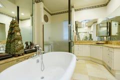 Intérieur étonnant de salle de bains avec des murs et des statues de miroir Photos libres de droits