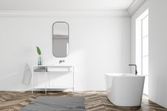 Intérieur blanc de salle de bains de grenier, vue de côté de baquet d'évier illustration de vecteur