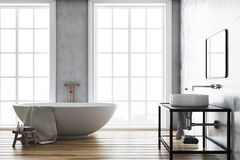 Intérieur concret de luxe de salle de bains illustration de vecteur