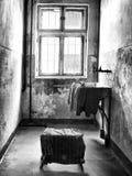 Intérieur d'une cellule photo libre de droits