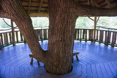 Intérieur de cabane dans un arbre photos libres de droits
