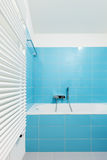 Intérieur, salle de bains Photo libre de droits