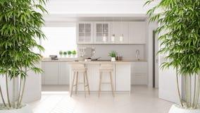 Intérieur de zen avec l'usine en bambou mise en pot, concept de construction intérieure naturel, cuisine blanche scandinave avec  images libres de droits