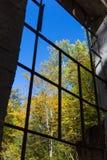Intérieur des ruines Photographie stock