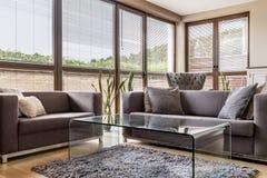 Intérieur gris avec de grands fenêtres et sofas Photo libre de droits