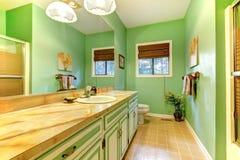 Intérieur périmé vert de salle de bains. photos libres de droits