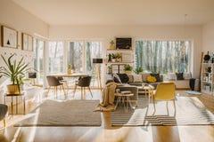 Intérieur spacieux et naturel de salle à manger vivante et avec un confortable images libres de droits