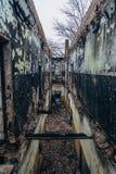 Intérieurs complètement brûlés et toit effondré de la maison après le feu Photographie stock libre de droits