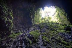 Int a caverna fotos de stock