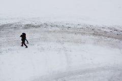 Int di camminata la neve Immagini Stock Libere da Diritti