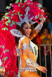 Int'l chinesische neues Jahr-Nachtparade 2011 Stockbilder