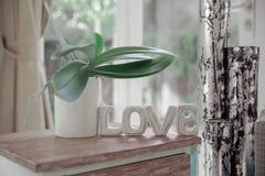Int?rieur scandinave de Minimalistic avec le sofa de conception, plantes tropicales, table basse, signe d'amour images stock