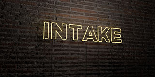 INTAKE -Realistic Neon Sign on Brick Wall background - 3D rendered royalty free stock image Royalty Free Stock Photo