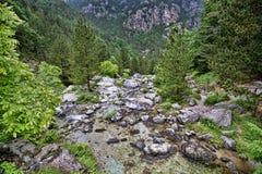 Intakt natur under Mount Olympus, Grekland fotografering för bildbyråer