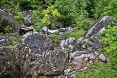 Intakt natur under Mount Olympus, Grekland royaltyfri bild
