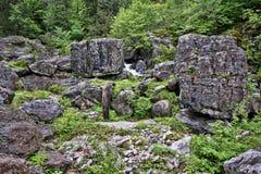 Intakt natur under Mount Olympus, Grekland royaltyfri foto
