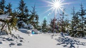 Intakt snö Timelapse 4k för vintersiktslöneförhöjning lager videofilmer