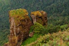 Intanon国家公园Chianng Mai泰国 免版税库存图片