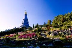 Intanon Moutain, Chiangmai, Nord della Tailandia Fotografia Stock Libera da Diritti