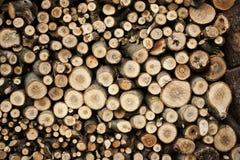 Integrado por la madera aserrada foto de archivo