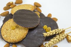 Integral chocolate cookies with almonds and wheat Royalty Free Stock Photos