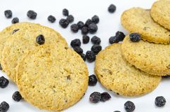 Integral cookies with aronia Stock Photo