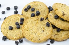 Integral cookies with aronia Royalty Free Stock Photos