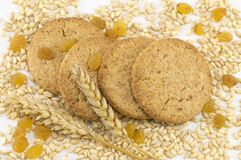 Integral cookies with raisins and wheat plant on white backgroun Royalty Free Stock Images