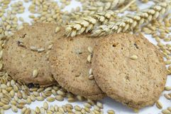 Integral cookies and wheat on white Stock Photo