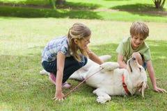 Integral de los niños que juegan con el perro casero en el parque Imagenes de archivo