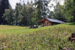 Integral Natural Reserve of Monte Bondone stock photo