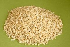 Integral rice Stock Photos