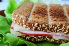 Integral toast, ham and cheese sandwich 5. Integral toast with sesame and other whole seeds, ham and cheese sandwich served on a brown porcelain plate over fresh Royalty Free Stock Photo