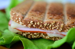 Integral toast, ham and cheese sandwich 7. Integral toast with sesame and other whole seeds, ham and cheese sandwich served on a brown porcelain plate over fresh Royalty Free Stock Image