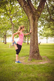 Integrale della donna che si esercita con l'allungamento della gamba Fotografie Stock